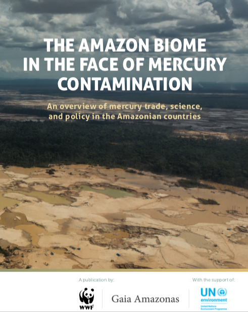 The Amazon Biome in the face of mercury contamination